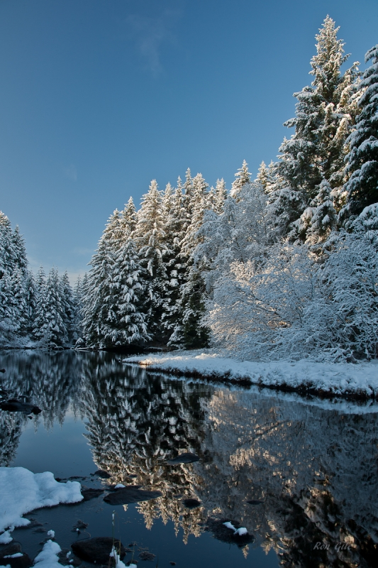 Auke Lake Winter