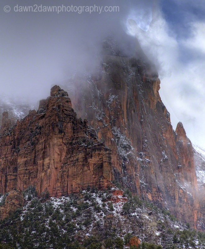 Zion Winter