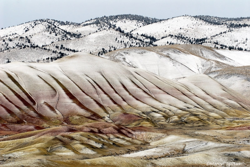 Painted Hills In Winter