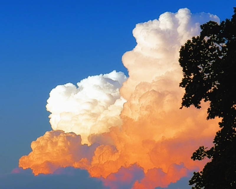 Sunkissed Storm Cloud