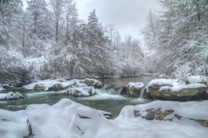 Greenbriar Winter, Great Smoky Mountains Np