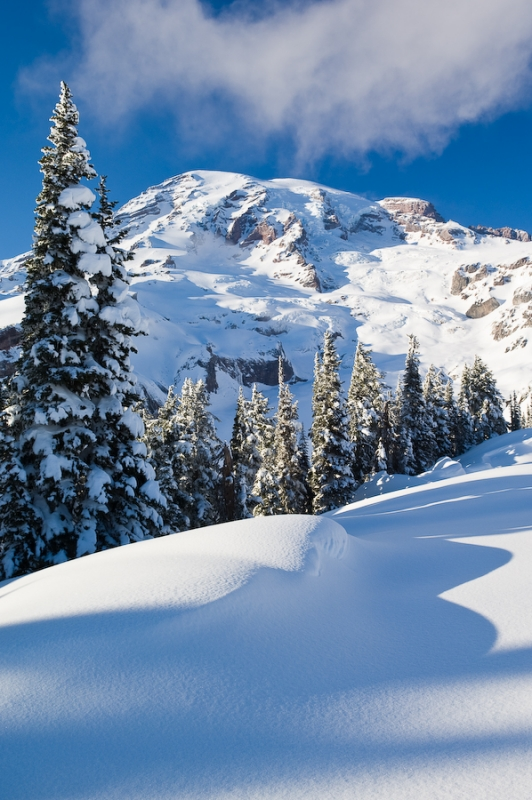 Mount Rainier In Winter