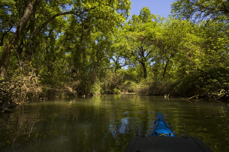 Kayaking The Cosumnes River