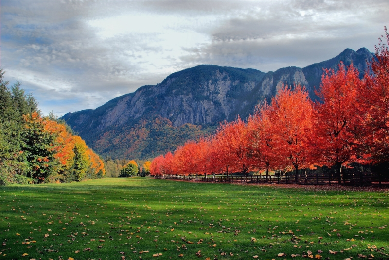 Mount Si Autumn