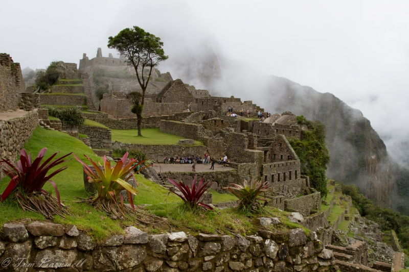 Misty Machu Picchu, Peru's Iconic National Park