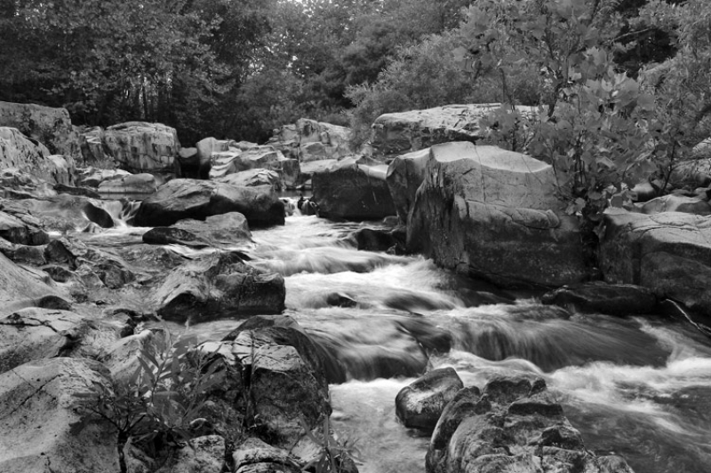 Castor River In Black And White