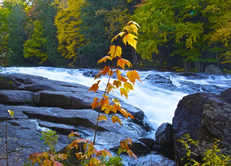 Fall At The Falls