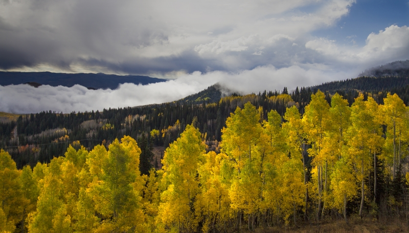 Colors Of The Wasatch
