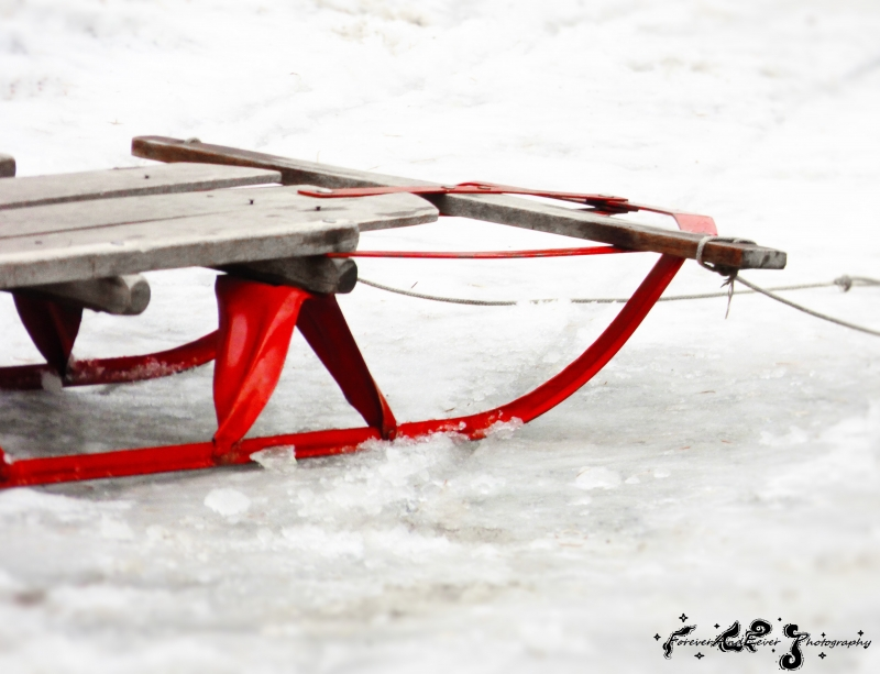 The Old Red Runner-sled