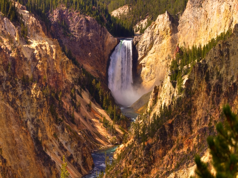 Lower Falls Yellowstone National Aprk