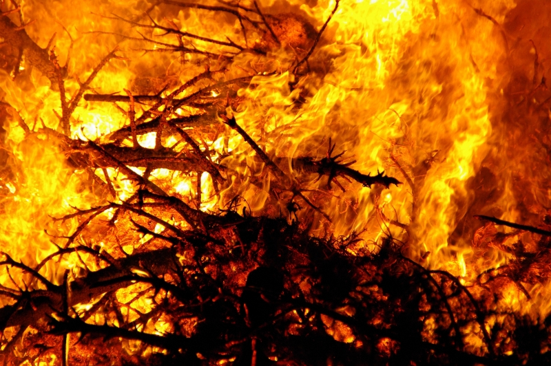 Christmas Tree Bond Fire