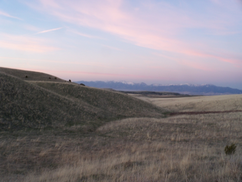 Grasslands And The Bridgers