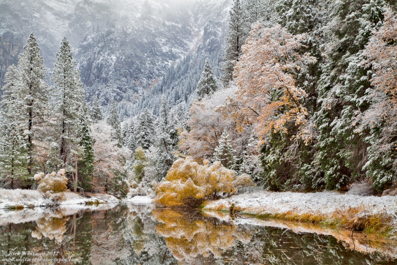 Merced River In Snow And Fall Colors
