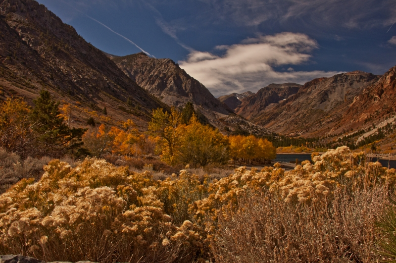 Lundy Canyon In The Fall