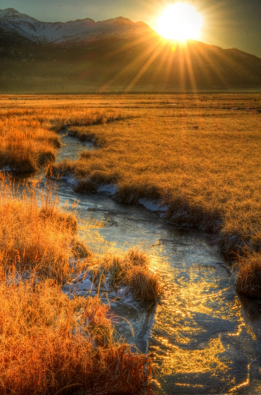 Potter Marsh Sunrise