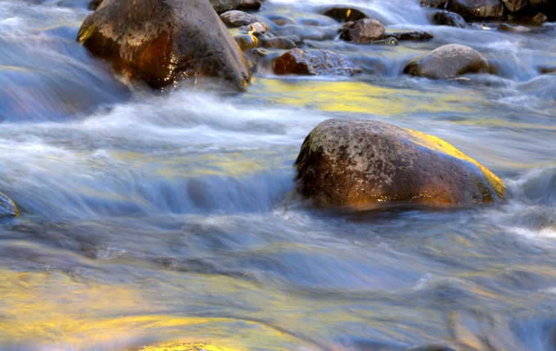 Water Abstract – Animas Stream