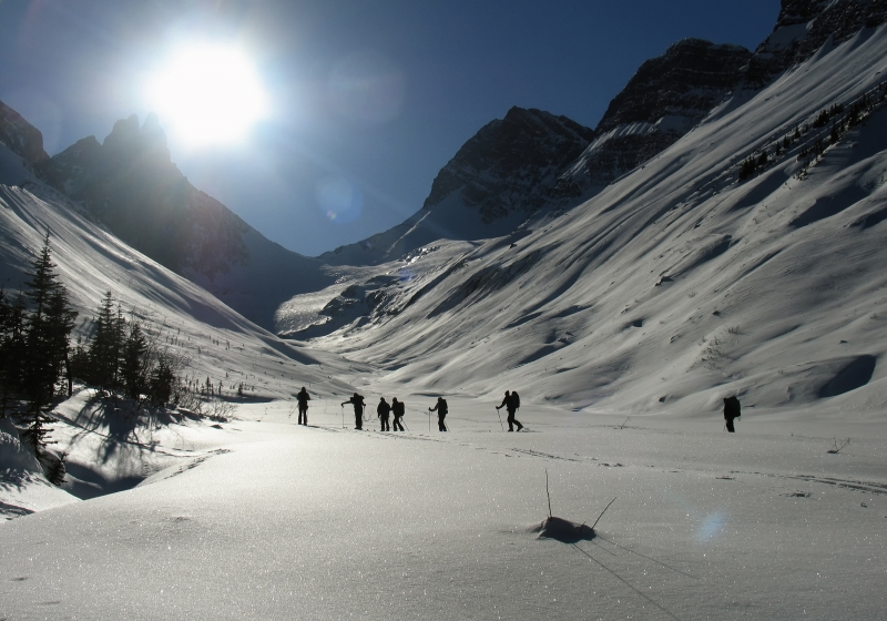 Backcountry Skiing Roberston Glacier