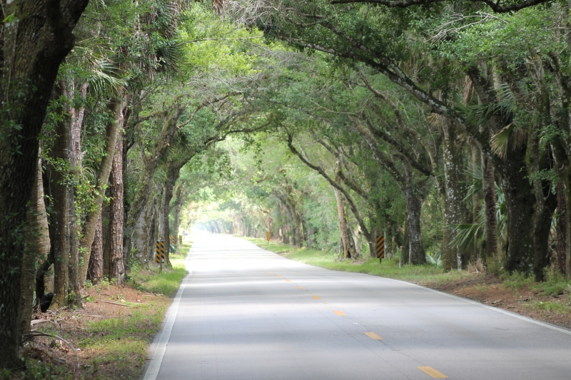 Road To Serenity