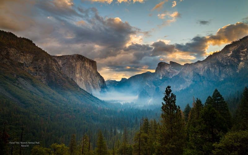 Misty Magic Of Yosemite Tunnel View