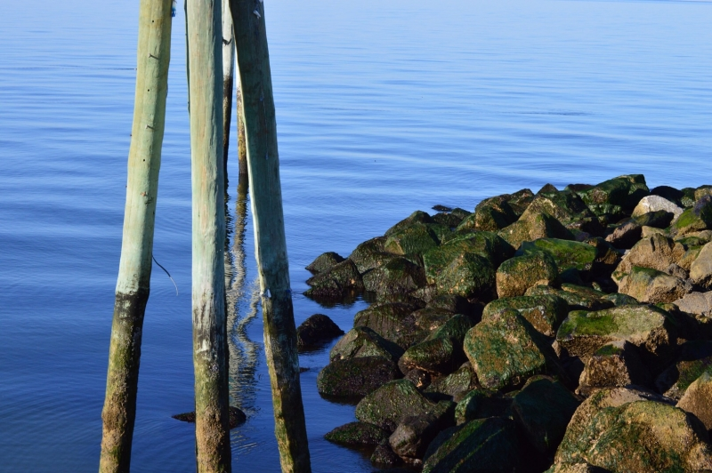Upon The Long Island Sound