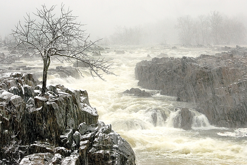 Winter At Great Falls, Va