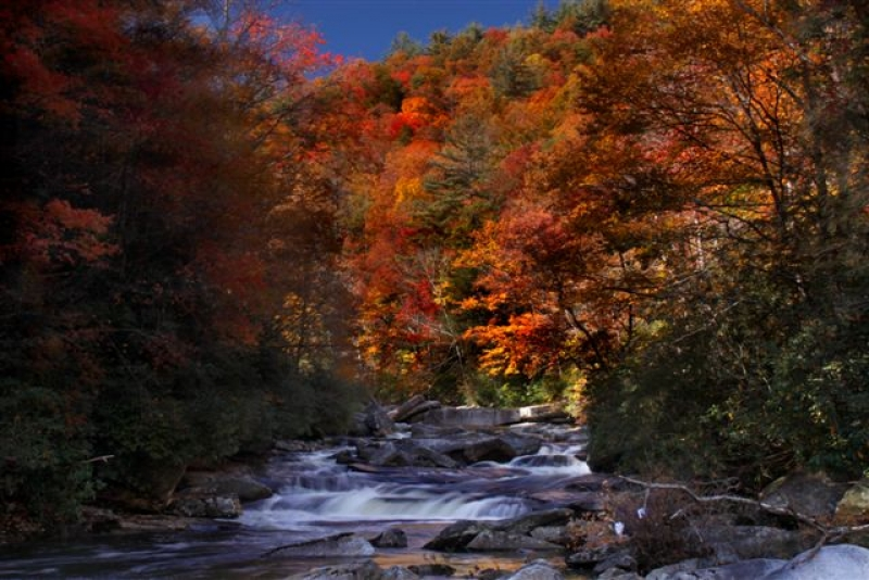 Fall In Gorges State Park