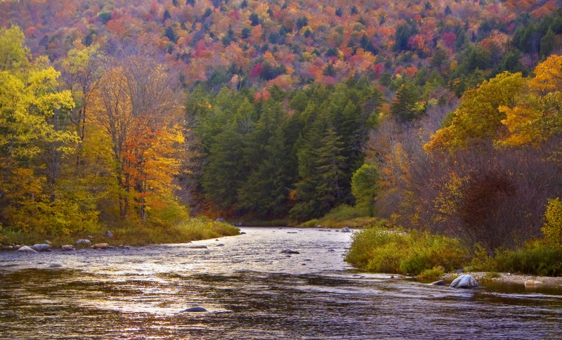 Sacandaga River Autumn