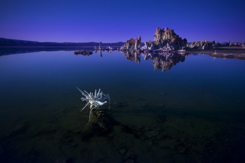 The Beautiful Desolate Earth – Mono Lake, Ca