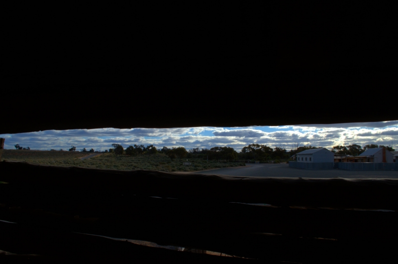 Shearing Shed View