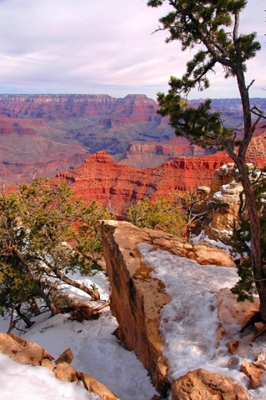 Grand Canyon In Early Winter