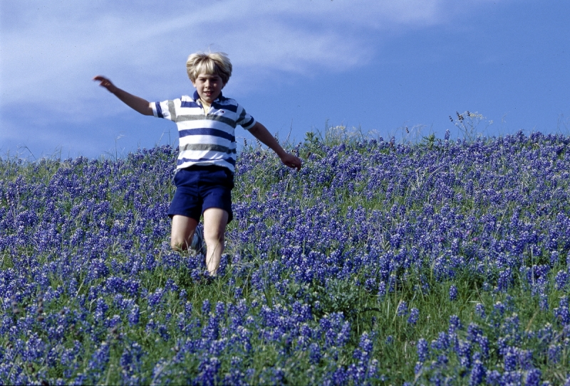 Boy And Bluebonnets
