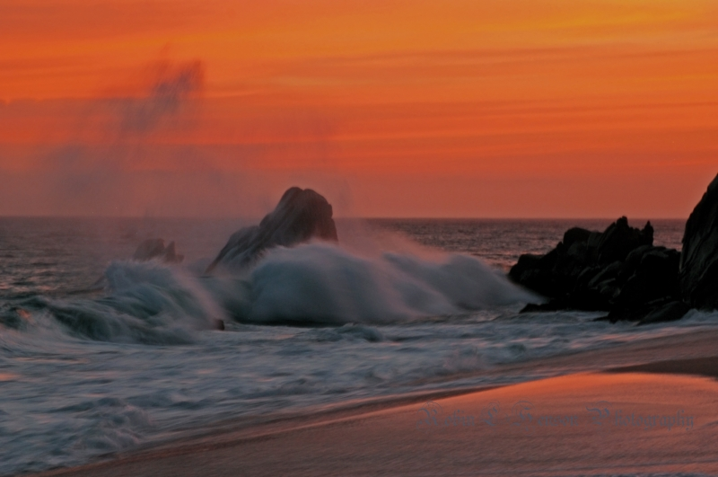 Ocean Spray Sunset