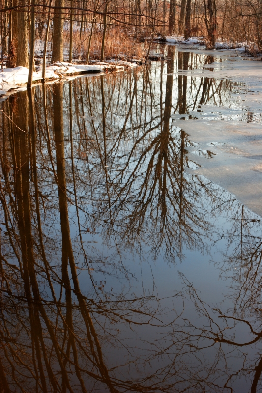 Fish Creek Reflections