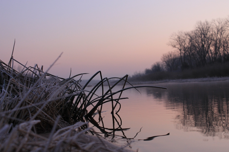 Frost On The River