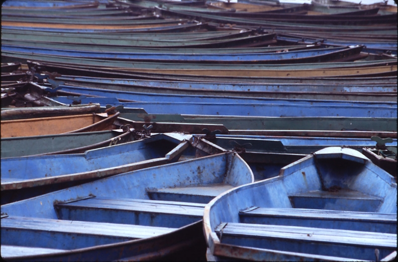 Rowboats In Hangzhou