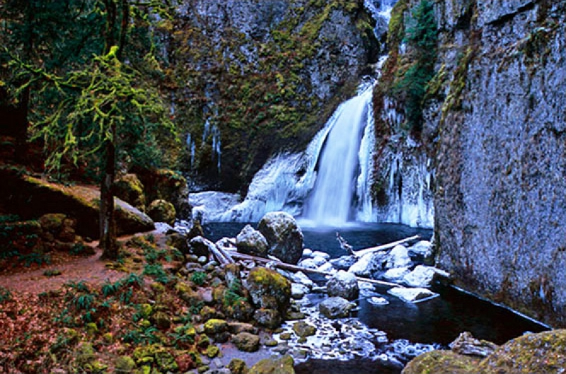 Wahclella Falls, Columbia River Gorge, Or