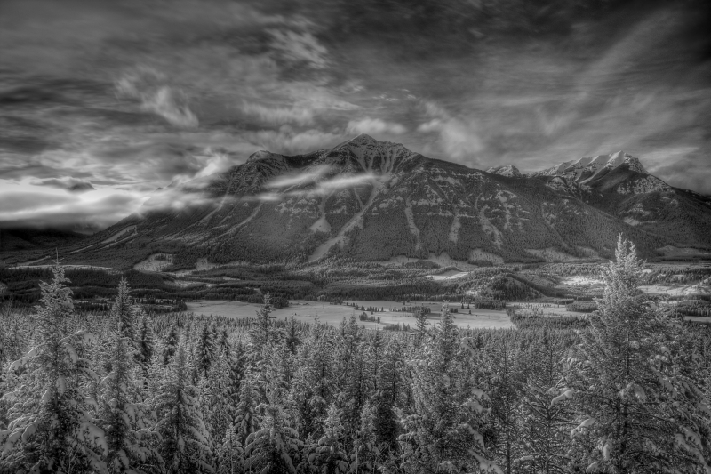 Elkford Viewpoint