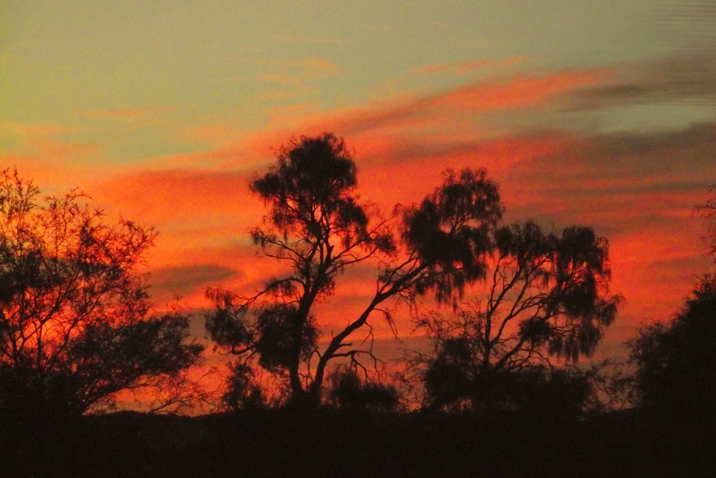 Sunset Over The Outback
