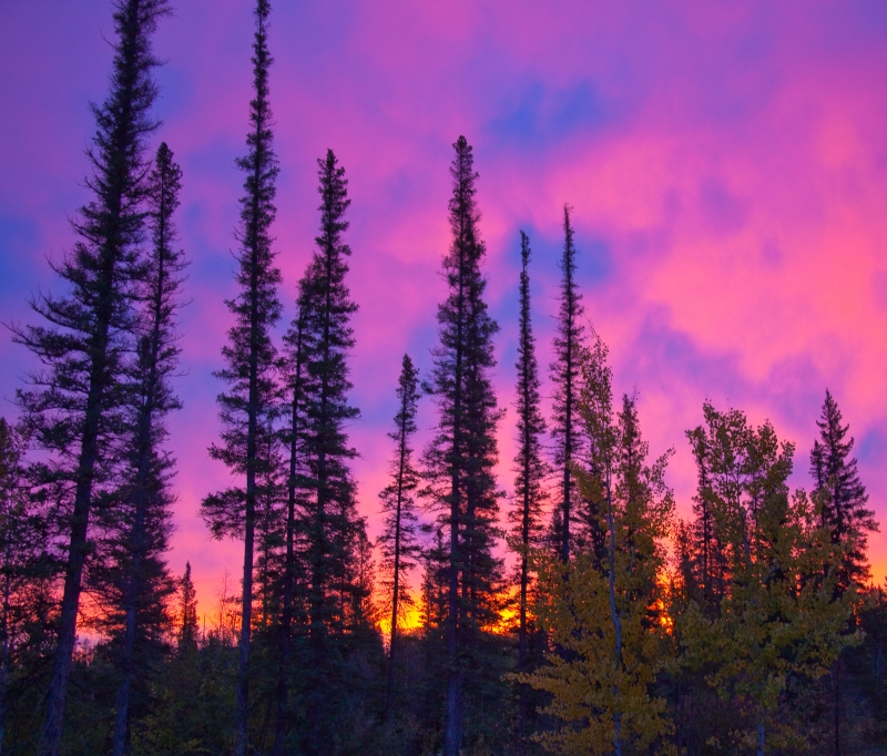Sunrise In The Northwest Territories