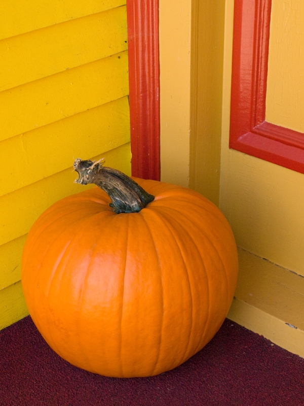 Pumpkin On The Stoop