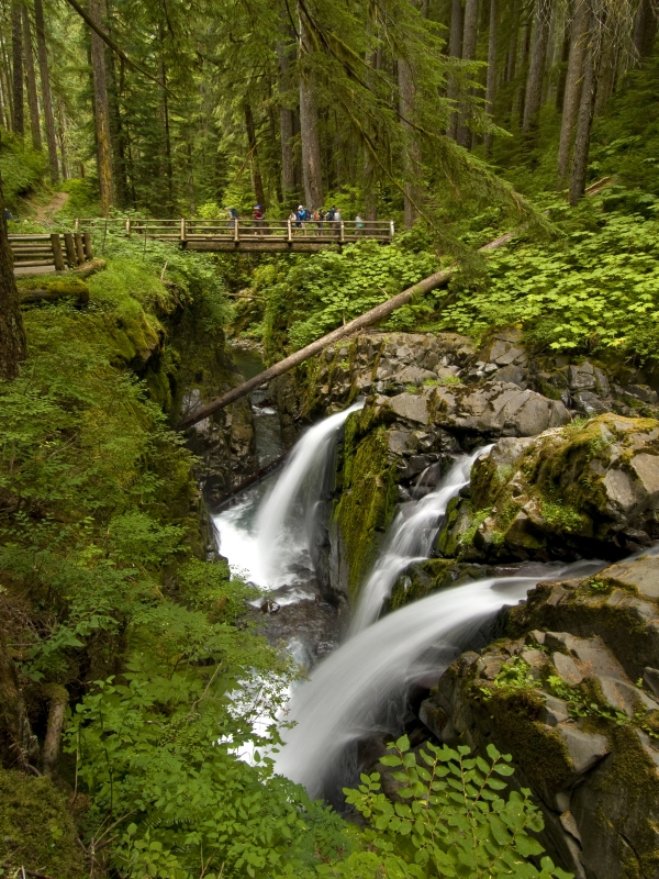 Sol Duc Falls And Hikers