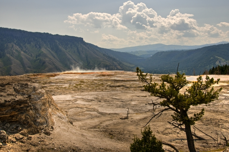 Overlooking Mammoth Hot Springs