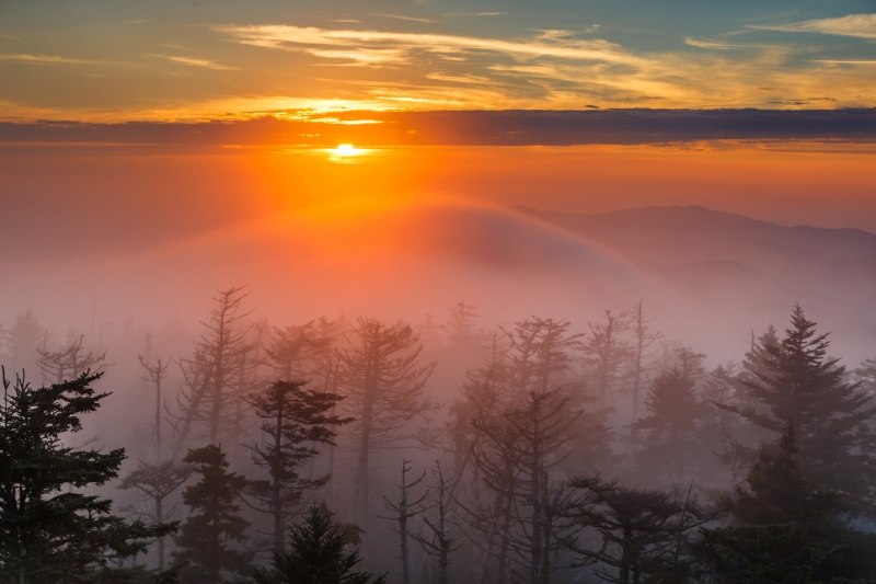 Foggy Sunset From Clingman's Dome