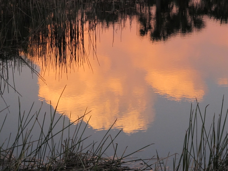 Sunset Cloud Reflected In A Pond