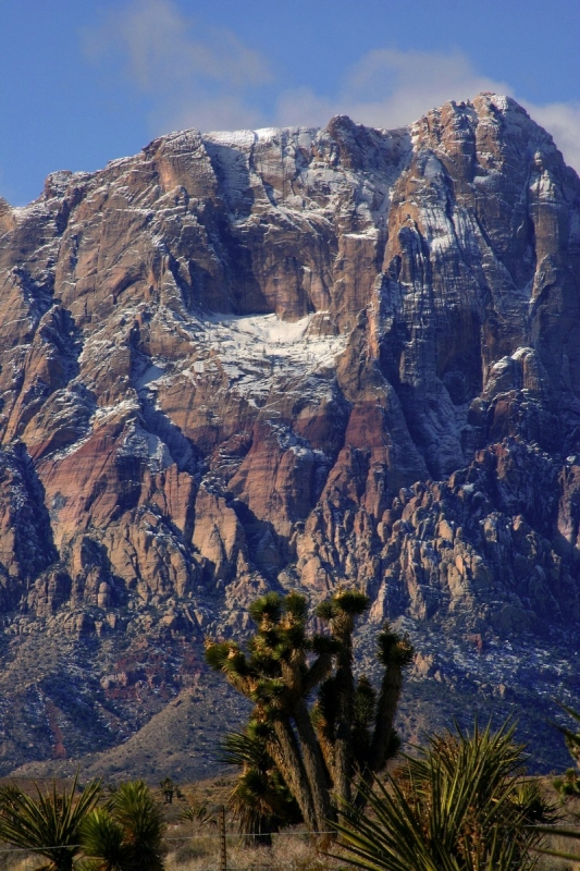 Red Rock In Winter 2