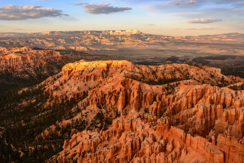 Last Light On Bryce Canyon