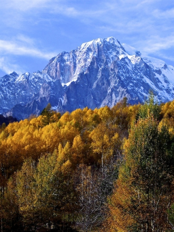 Fall Colors In The Alps