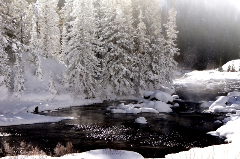 Taylor River Winter