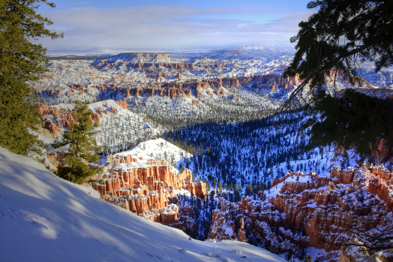 Winter In Bryce Canyon