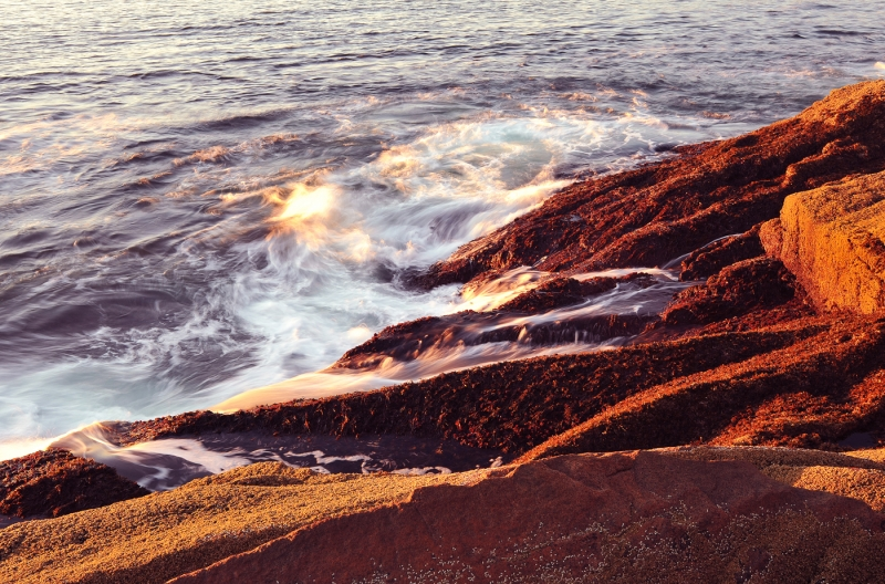 Thunder Hole Sunrise